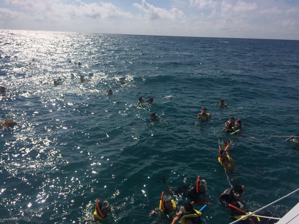 Mark Champion, swim, lessons, goal setting, Tony Robbins